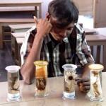 Botany class